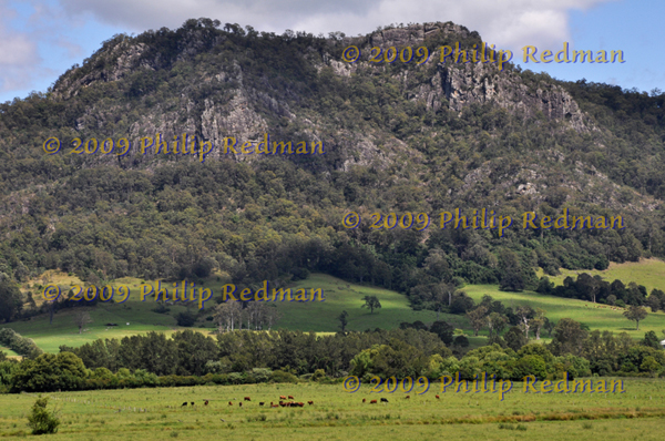 View to Barrington Tops near Gloucester New South Wales.